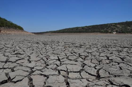 Amenaza escasez de agua a productores de Guanajuato (Noticias Vespertinas)