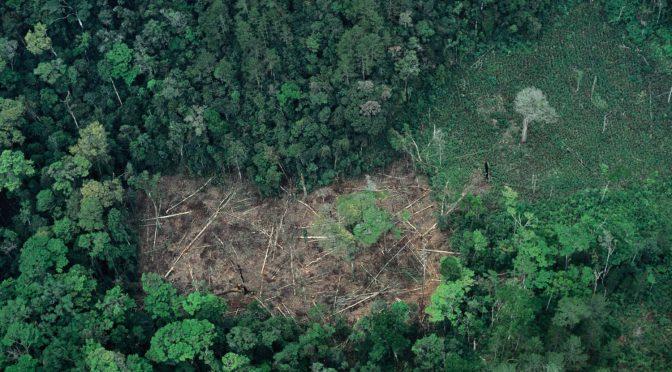 México se suma a la protección de los defensores ambientales con el tratado de Escazú (El País)