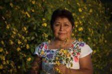CDMX: Leydy Pech: Monsanto sigue impune con la soya transgénica. (La Jornada)