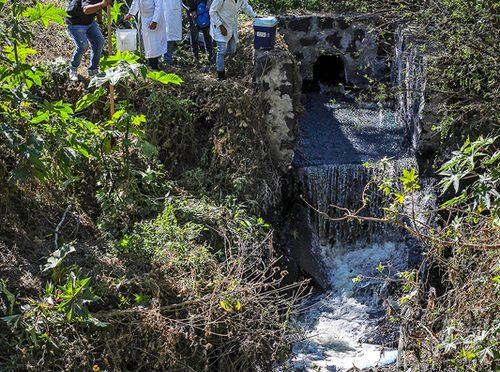 Del envenenamiento neoliberal a la reconstrucción socioambiental (La Jornada del Campo)
