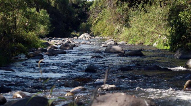 Sonora: Revertir la contaminación de los ríos mexicanos. (Aristegui noticias)