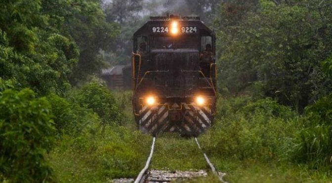 Podría durar un año el litigio para la suspensión del tramo 2 del Tren Maya (ASICH)