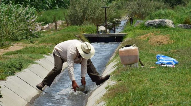Uso de aguas contaminadas aumenta la presencia de enfermedades crónicas (MILENIO)
