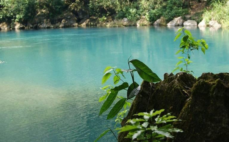 Veracruz: Ambientalistas exigen un alto a la contaminación del río Atoyac (Diario de Xalapa)