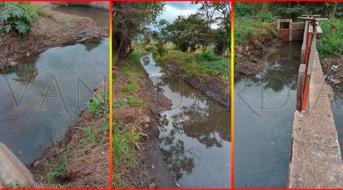 Río Atoyac, contaminado por ingenios azucareros y alcoholeras (Vanguardia Veracruz)