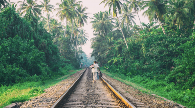 Tren Maya: comunidades yucatecas detienen temporalmente el ambicioso tren (Ecoosfera.com)