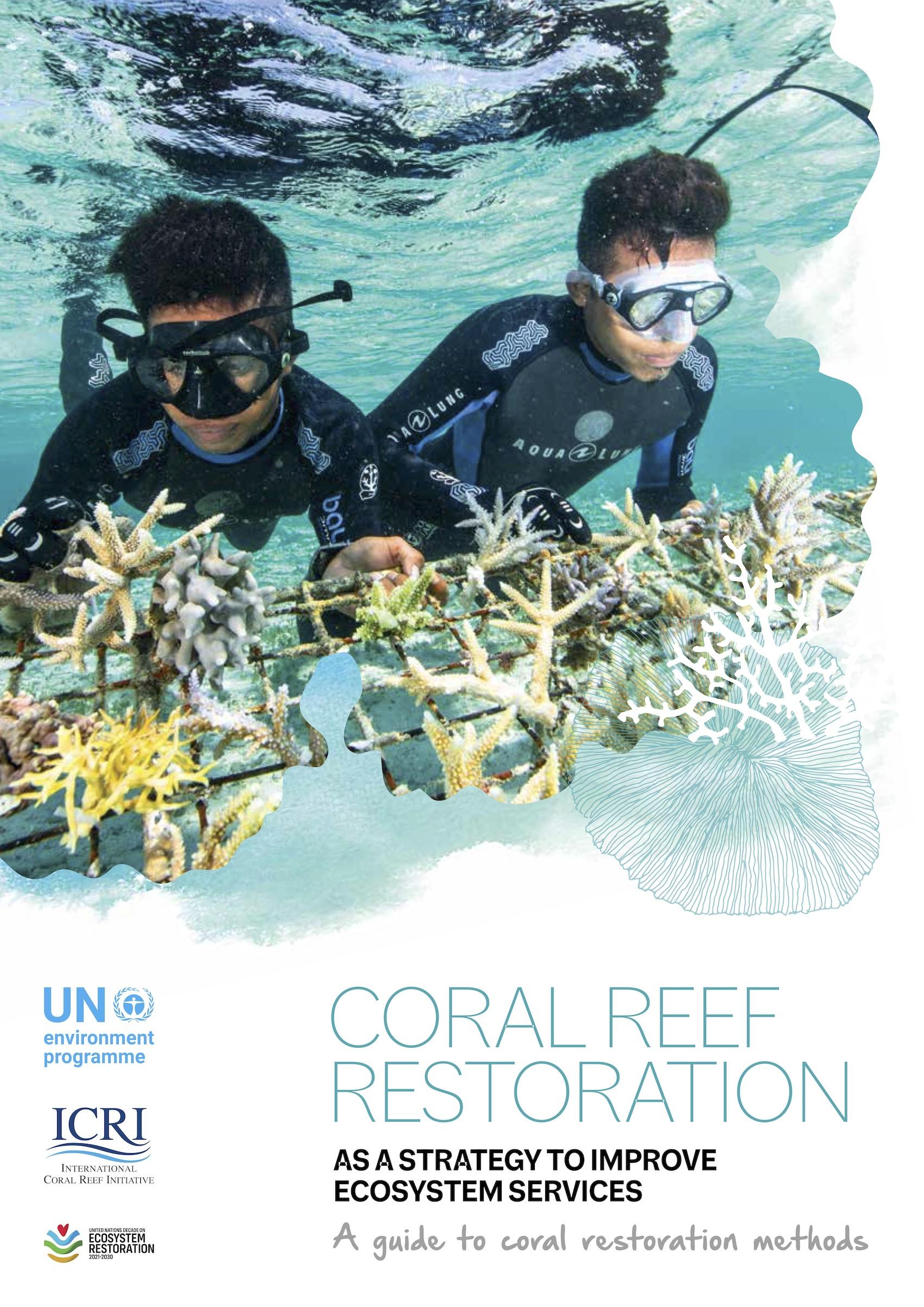 La restauración de los arrecifes: una guía sobre el método de restauración de los corales