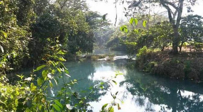 Veracruz: Contaminación acaba con el Atoyac y habrá protesta (El Sol de Córdoba)