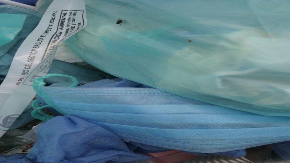 Recomiendan uso de cubrebocas lavables para evitar más contaminación en mares (Vértigo Político)