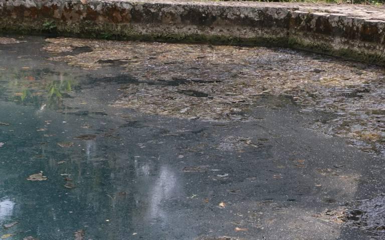 Veracruz: Pobladores de Cuautlapan exigen mejores condiciones de agua potable (El Sol de Córdoba)