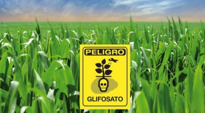 Años tardará la tierra para eliminar contaminación por glifosato (Mega Noticias)