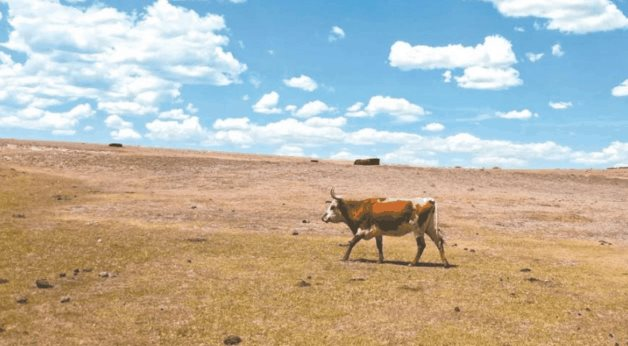 Inquieta escasez de agua de Chihuahua (El manana.com)
