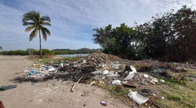 Contaminación sin freno en el Estero del Infiernillo (El Sol de Mazatlán)