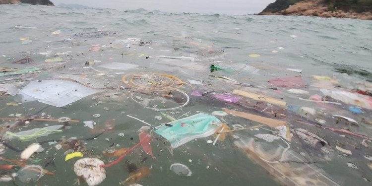 Cubrebocas protegen del virus pero dejan toneladas de basura en la vida salvaje (Bajo palabra)