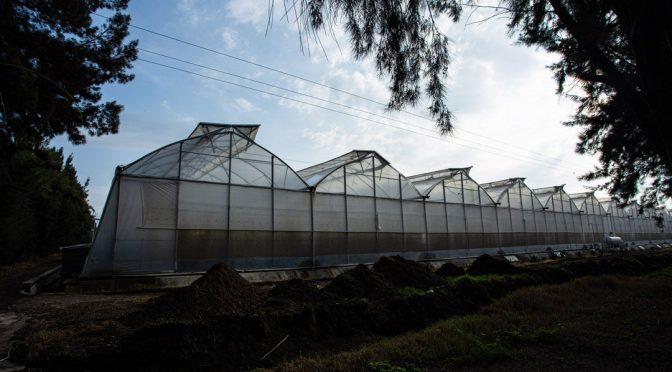 Jalisco: Los explotadores del agua: Dueños de la tierra, pero no del agua (Contra la Corrupcion.mx)