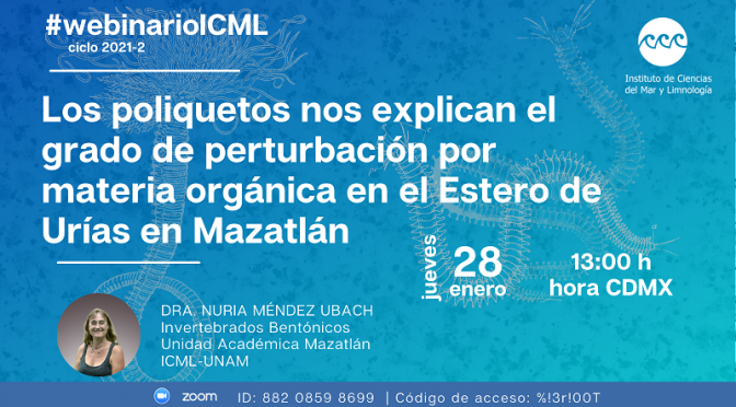 Webinario ICML- Los poliquetos nos explican el grado de perturbación por materia orgánica en el Estero de Urías en Mazatlán