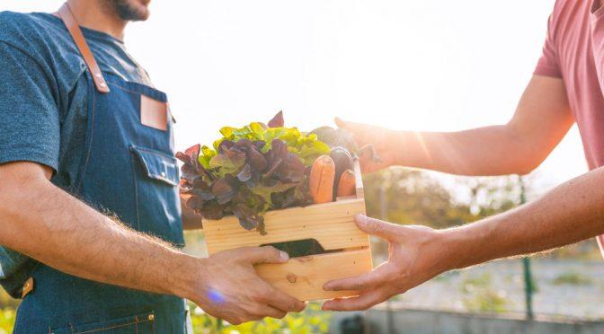 Qué son las verduras agroecológicas y cuáles son sus beneficios (BIOGUIA)