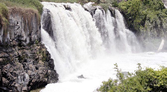 Guanajuato: El Santiago, un ejemplo de crisis del agua (El Diario NTR)