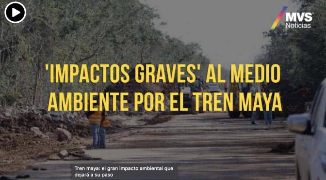 México: Tren maya: el gran impacto ambiental que dejará a su paso (MVS)