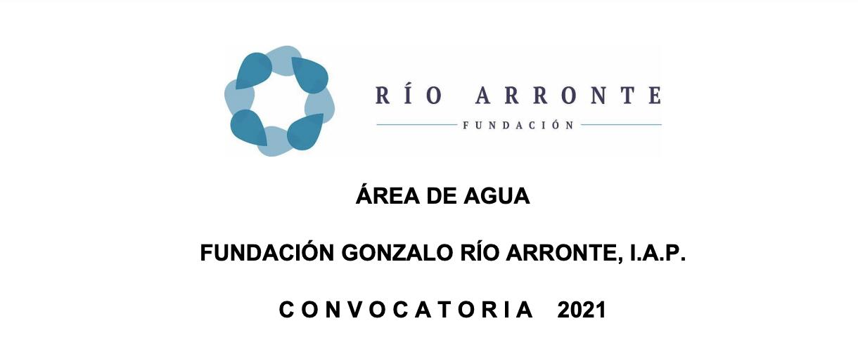 Convocatoria 2021 de Fundación Gonzalo Río Arronte, I.A.P: Plan Estratégico 2019-2024