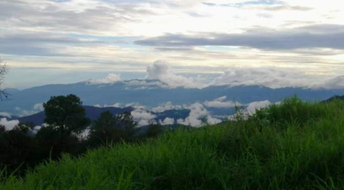 Ecosistema: Desafíos ambientales de México en 2021 (NOROESTE)