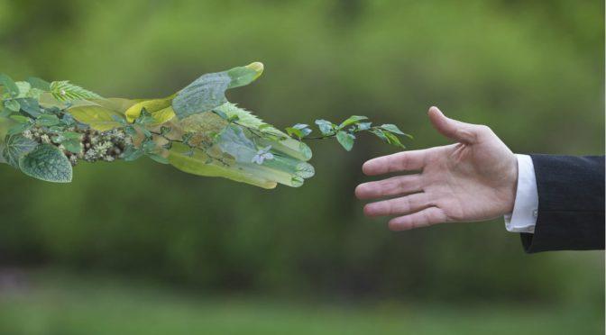 España: Reinventar la naturaleza para asegurar el suministro de agua en las ciudades (El Ágora)