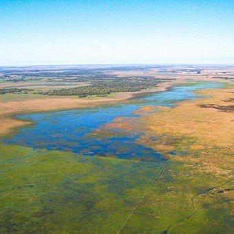 Argentina: Agro y ambiente. El cuidado de los humedales también es parte de las buenas prácticas productivas (clarin.com)