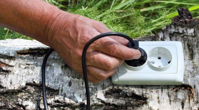 Chilenas Inventan Un Enchufe Que Toma La Energía Eléctrica De Las Plantas (eltierrero)