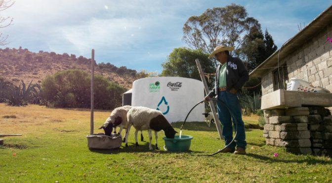 México: Cada gota cuenta, fundaciones refuerzan acciones para garantizar el acceso al agua (SinEmbargo)