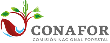 Enfoques metodológicos para la estimación de la deforestación en México. (CONAFOR)