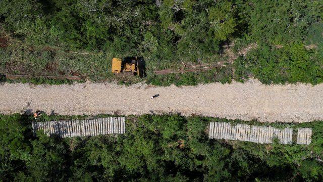 Tres proyectos ferroviarios que buscan conectar a México y Centroamérica (Forbes México)