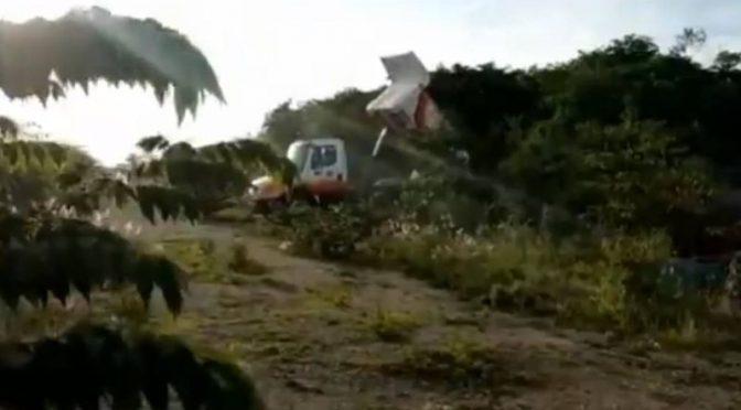 """Península Yucateca: Una """"mafia agraria"""" privatizó, en tres décadas, medio millón de hectáreas ejidales en Yucatán (Proceso)"""