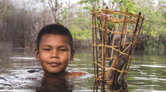 Un tercio de los peces de agua dulce en el mundo están en peligro de extinción: estudio(MILENIO)
