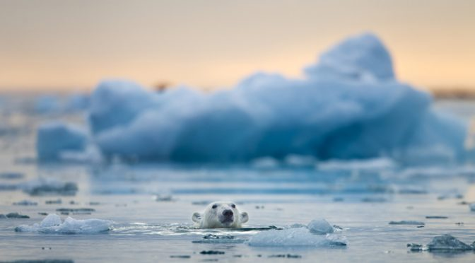 El cambio climático está elevando el nivel de los mares mucho más rápido de lo que se creía (National Geographic En Español)