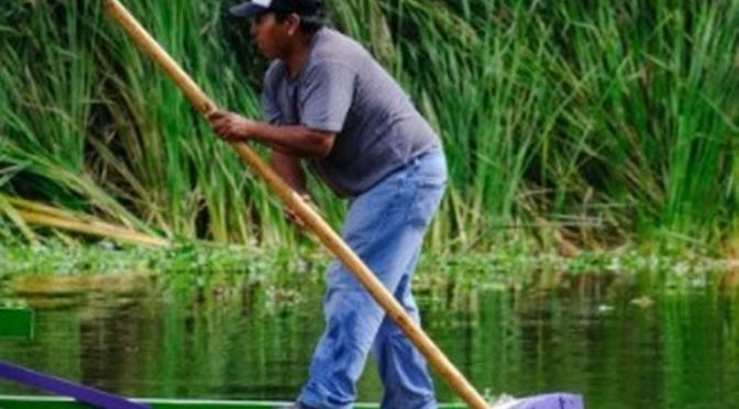 CDMX: Zona chinampera, sin agua (El Sol del México)