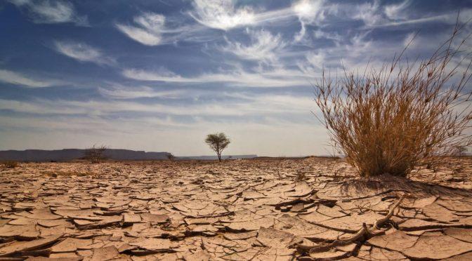 Madrid: Tecnología para reducir el consumo y combatir el estrés hídrico (Cinco Días)