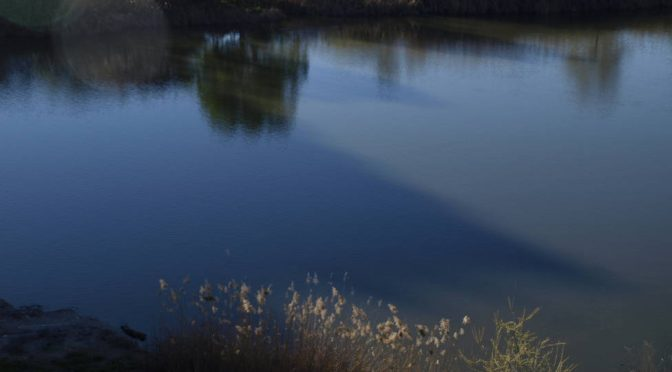 """En el Día Mundial del Agua 2021, """"Valoremos el agua"""" (COPE.es)"""