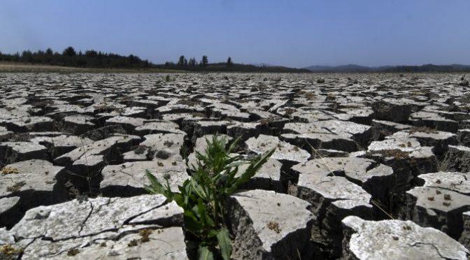 """Chile: Microdocumental """"El agua es un derecho humano"""" (El Mostrador)"""