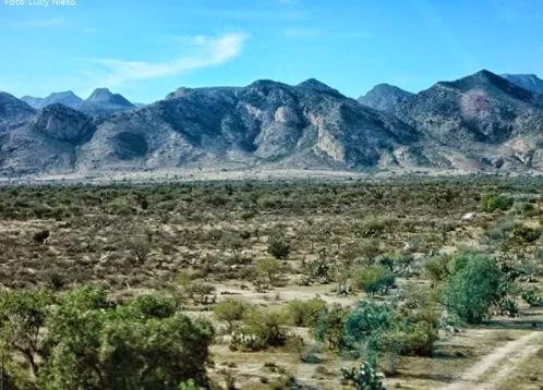 San Luis Potosí: Inicia consulta pública para proyecto del ANP Sierra de San Miguelito (La Jornada de San Luis)