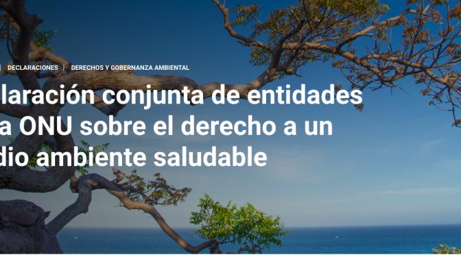 Declaración conjunta de entidades de la ONU sobre el derecho a un medio ambiente saludable (unep.org)
