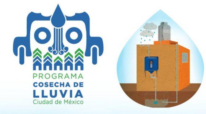 Así puedes obtener en CDMX el subsidio de 50% para obtener un sistema de captación de lluvia (Infobae)