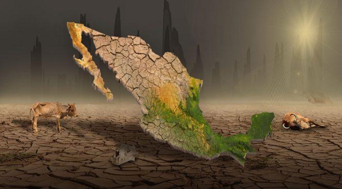 El oscuro panorama por las sequías en México: crisis alimentaria, incendios y muerte (Infobae)
