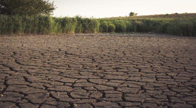 México: La ignorada crisis del agua (mexicosocial.org)
