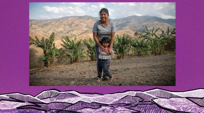 Agua, necesaria en la lucha contra la violencia (Reporte Indigo)