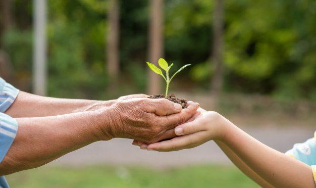 Opinión: Sin medio ambiente sano, no hay derechos humanos (e-consulta.com)