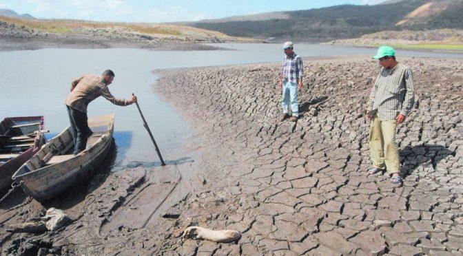 Agua: recurso cercano a cotizar en la Bolsa de Valores de México, señala experto (Once Noticias)