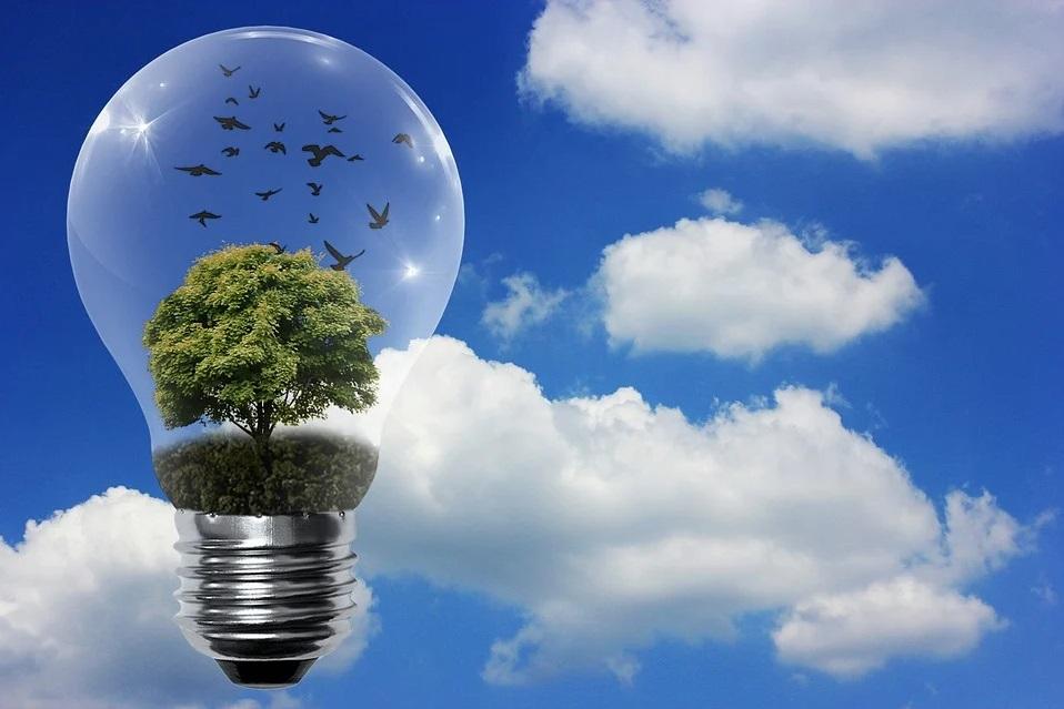 Día Mundial de la Eficiencia Energética (Ambientum)