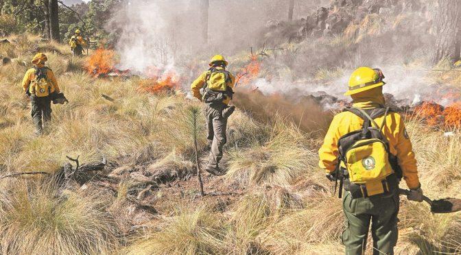 Somos los bomberos del medio ambiente, dicen combatientes de la Conafor (El Universal)