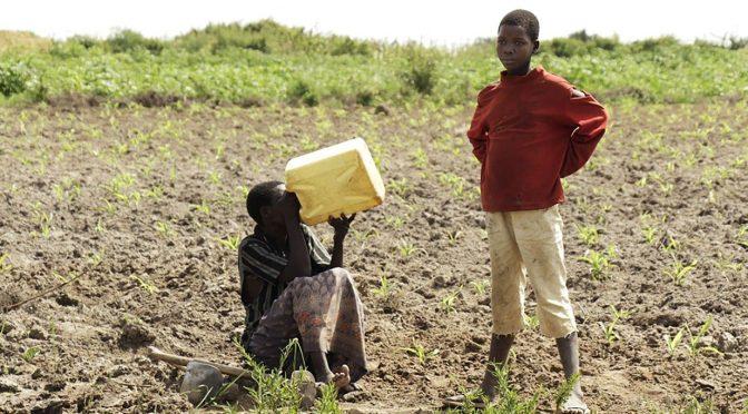 Que el agua potable esté también al alcance de los más necesitados (Vatican News)