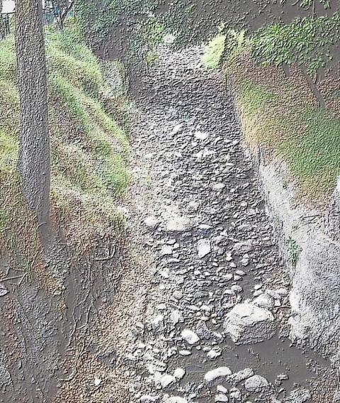 Escasez de agua en la Zona Metropolitana del Valle de México: problemas, retos y alternativas